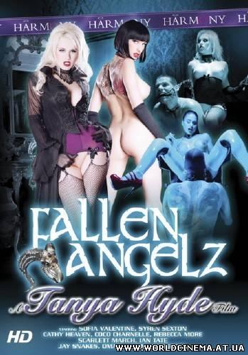 Fallen Angelz [2012, Gonzo, Anal, DVDRip]